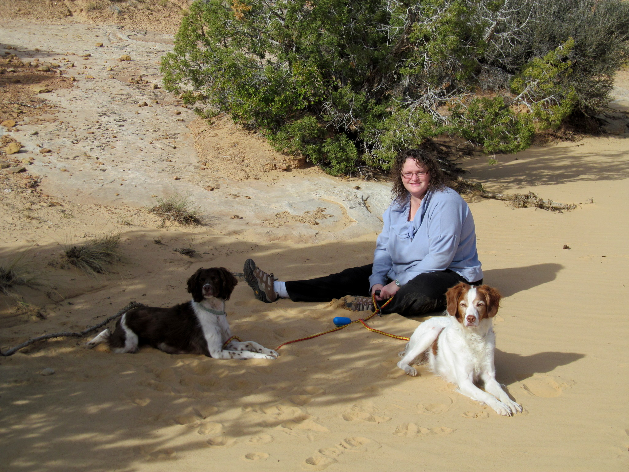 Photo: Traci and the pups