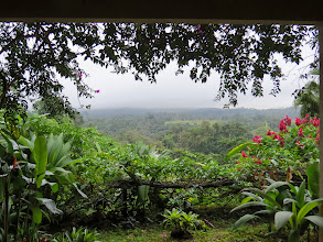Photo: More typical weather, soft rain,at Lost Iguana Lodge.