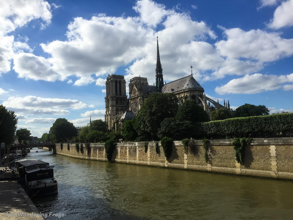 Most Famous Cathedral in Paris: Notre Dame Cathedral // Notre Dame Cathedral in Full Glory