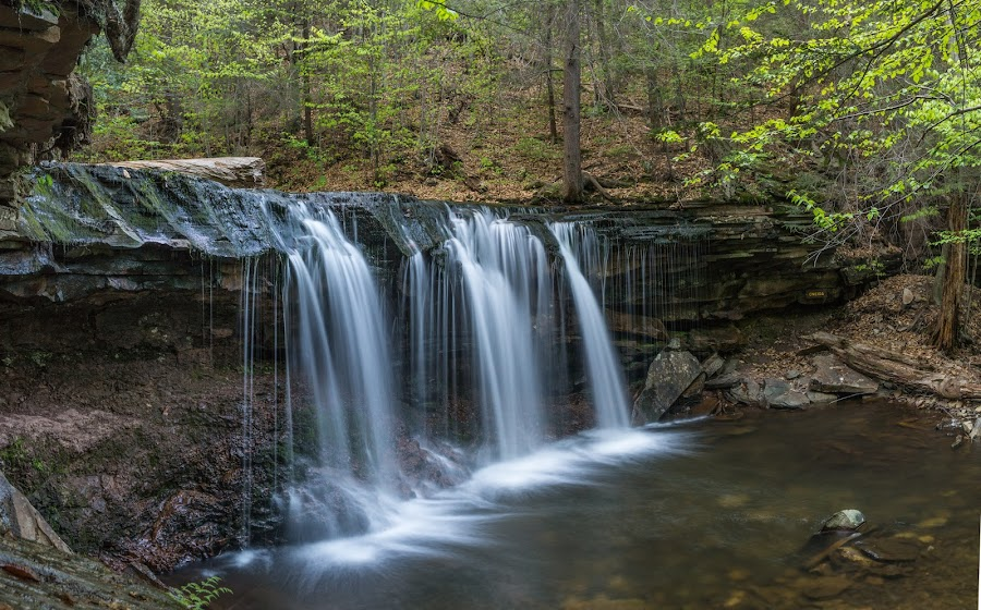 Waterfall at Ricketts Glen by Michael Holmes - Landscapes Waterscapes ( water, stream, waterfall, forest, rocks, river,  )
