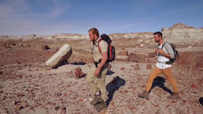 Petrified Forest National Park thumbnail