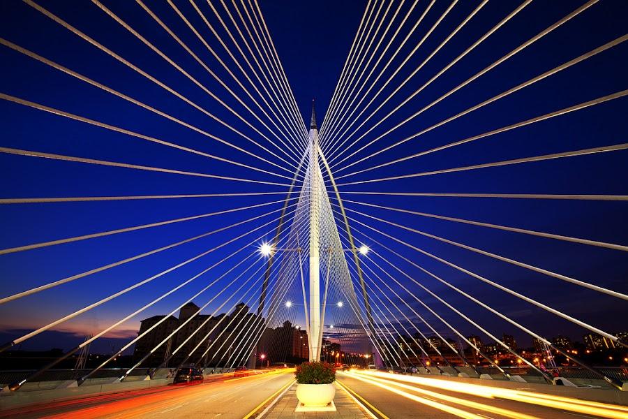 The Seri Wawasan Bridge by Justin Ng - Buildings & Architecture Bridges & Suspended Structures ( justin ng photo, putrajaya, blue hour, magic hour, malaysia, justin ng, seri wawasan bridge )