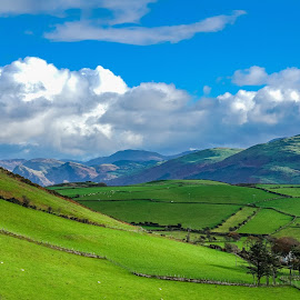 Dysynni Valley by Nigel Bishton - Landscapes Mountains & Hills
