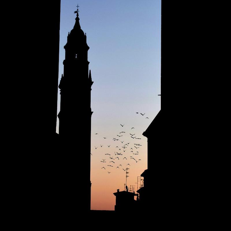 L'alba di Parma  di clara_ugolotti