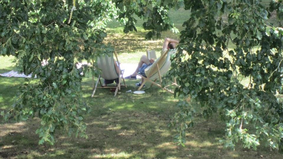 Lecture sous les arbres