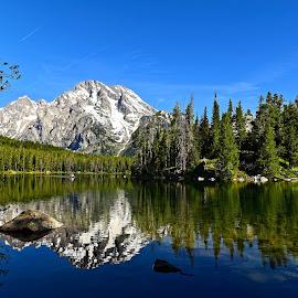 Leigh Lake by Gosha L - Landscapes Travel ( landscapes, nature, lakes,  )