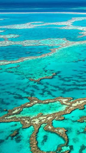 Download Great Barrier Reef Wallpaper Google Play Apps