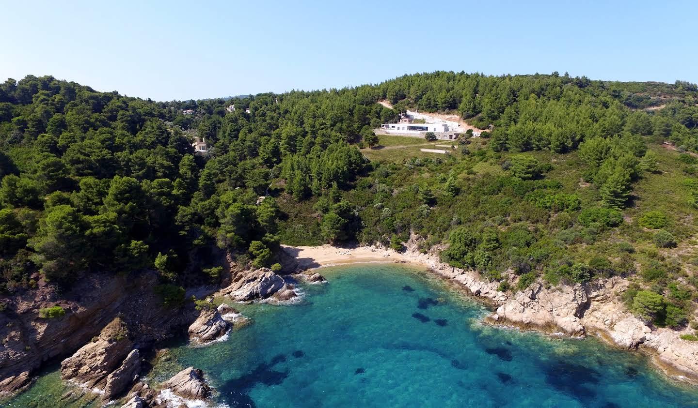 Villa avec piscine en bord de mer Sporades