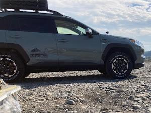 RAV4 adventure 2019のカスタム事例画像 シンさんの2020年11月08日11:00の投稿