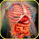 Atlas of Human Anatomy Offline