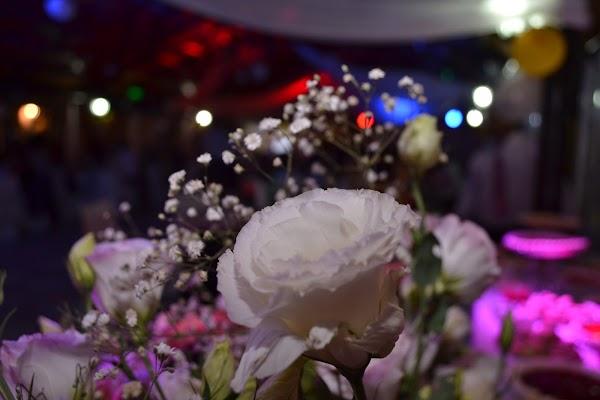 Fotógrafo de bodas Jessie Maza (ph_jessie). Foto del 28.04.2017