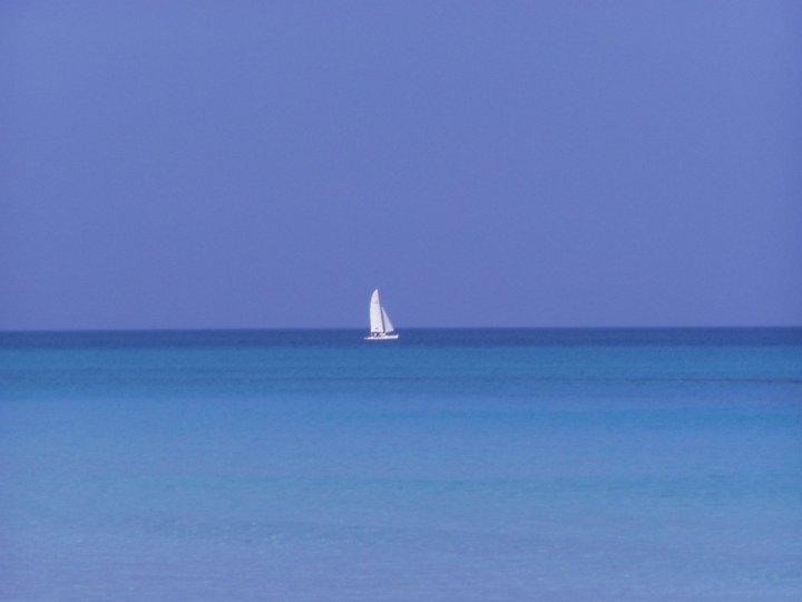 Tra cielo e mare... di Simona Rizzi