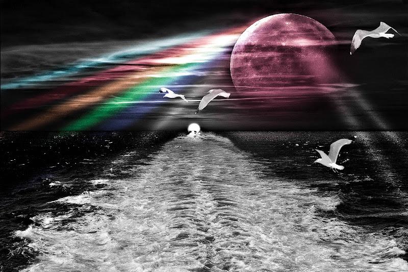 Breathe...per quanto tu viva e voli in alto solo se cavalchi la corrente tenendoti in equilibrio sull'onda...                           di massimo bertozzi