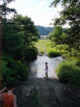 Photo: ... ale nejodvážnější průzkumnicí dne se stala Žá-ba, kterou to k vodě prostě táhne. Objevila způsob, jak překonat řeku Stře-lu.