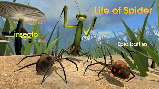 Life of Spider screenshot 7