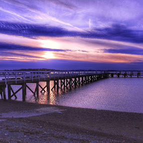Purple sky by Ann Goldman - Novices Only Landscapes ( purple pier sunset,  )