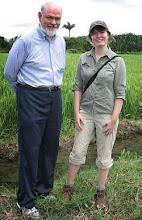 Photo: Marie-Soleil Turmel and Norman Uphoff visit an SRI field in Cuba in 2009. Turmel was working on her PhD thesis on SRI in Panama at the Tropical Research Institute at the time. [Photo courtesy of Marie-Soleil Turmel]