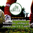 V.V. Capelle icon