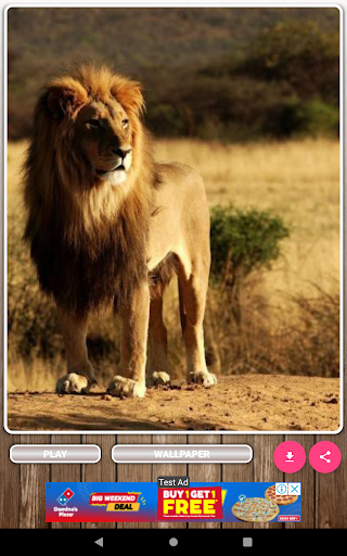 Lion Game Jigsaw Puzzle  screenshots 16