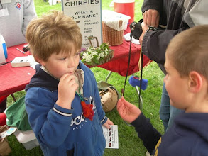 Photo: Eating a chocolate covered cricket! Fun with Bugs! at the Frick Earth Day Celebrations for World Environment Day 2010