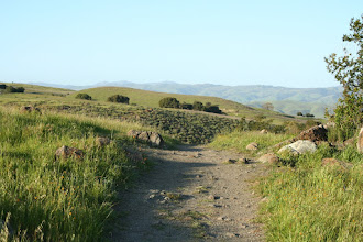 Photo: Top of Stile Ranch. Now it's down a valley and up again.