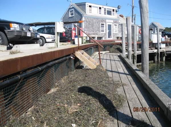 Seaweed And Debris Left Behind By Irene
