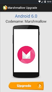 Upgrade to Marshmallow v3.0