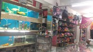 Vijay Collection photo 3