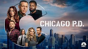 Chicago P.D. thumbnail