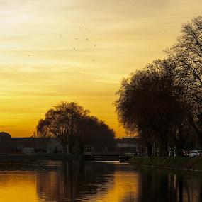 Strasbourg sunset by Carol Henson - City,  Street & Park  City Parks ( water, orange, december, reflection, park, sunset, 2015, alsace, france, shadows, river, strasbourg,  )