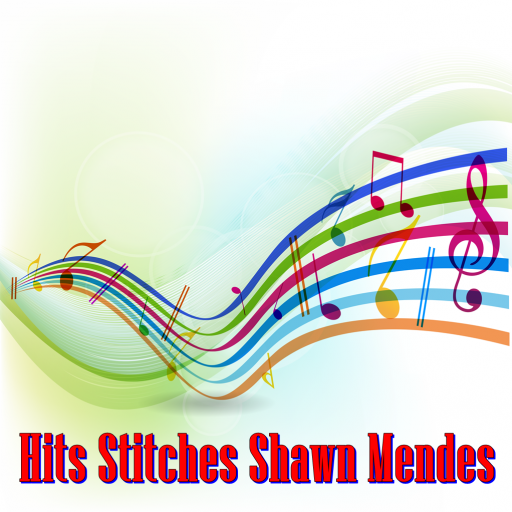 Hits Stitches Shawn Mendes