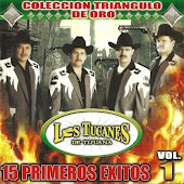 15 Primeros Exitos Vol. 1