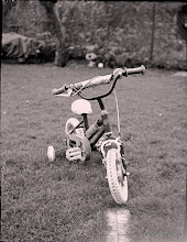 Photo: Bike.  1/4 plate Zeca camera (1925?).  f/8, 20 sec, paper negative and yellow filter. Tinted slightly