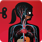 The Human Body by Tinybop icon