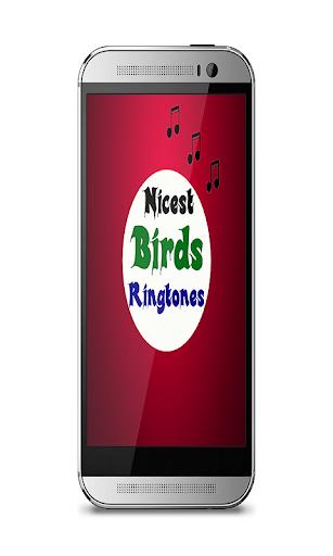 Nicest birds ringtones