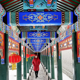 Lady in red  by Francisco Little - Instagram & Mobile Android ( red, china, color, snow, lady, temple, winter, cold )