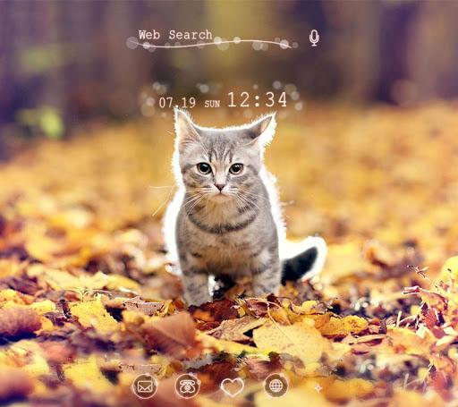 子猫の秋 無料壁紙アイコン