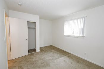 Tan carpet in bedroom, window with white blinds, white painted walls, closet door open showing closet on left