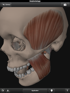 DentalNavigator- screenshot thumbnail