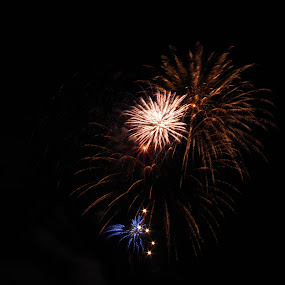 2014 Southgate Mall Fireworks Show V by Gregg Landry - Public Holidays July 4th ( liberty, fireworks, celebration, usa, independence day )