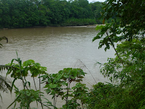 Photo: View of the river