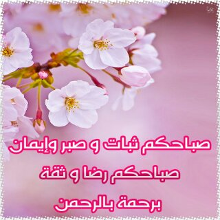 صباح الأمنيات الجميل XBi5tD17CYJQQd0rxmpO