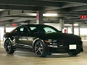 マスタング  18y GT Premiumのカスタム事例画像 オレンジバードさんの2018年11月18日20:47の投稿