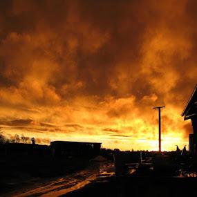 by Alex Newstead - Landscapes Sunsets & Sunrises ( clouds, farm, orange, set, australia, bush, leeton, sun, country )