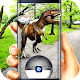 Catch dinosaurs to your collection (game)