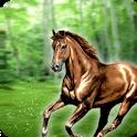 Jump Jungle Horse icon