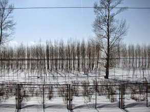Photo: March 16 (Tuesday) Harbin to Shenyang by Train