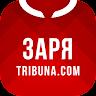 ru.sports.zarya