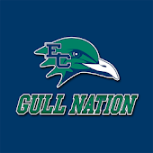 Endicott Gull Nation