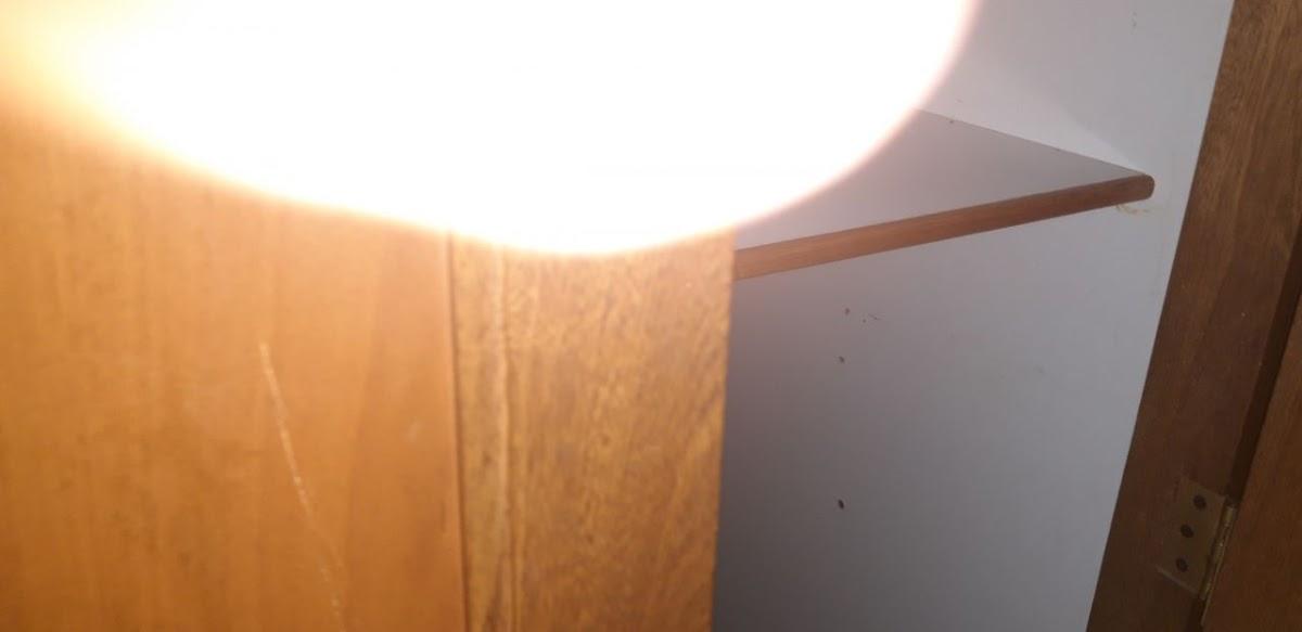 apartamento en arriendo entreamigos 691-7660